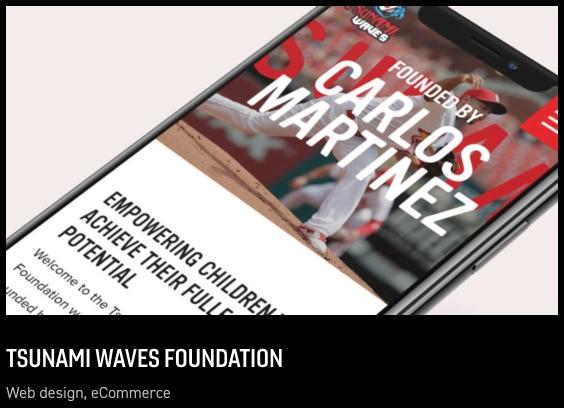 Tsunami Waves Foundation - Delt