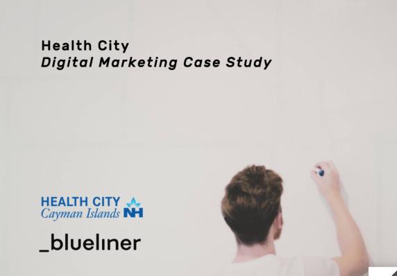 Healthcare Blueliner
