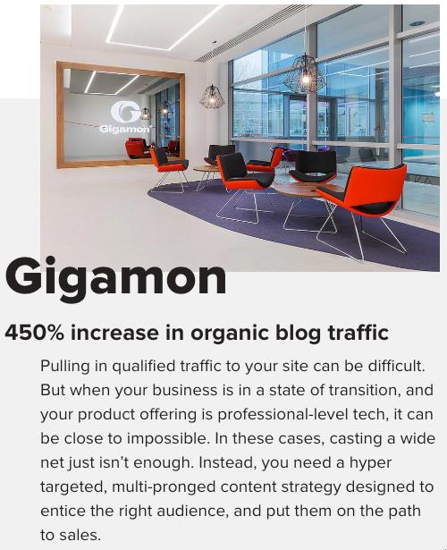 Gigamon Success Story