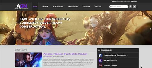 AGN Website Design Example