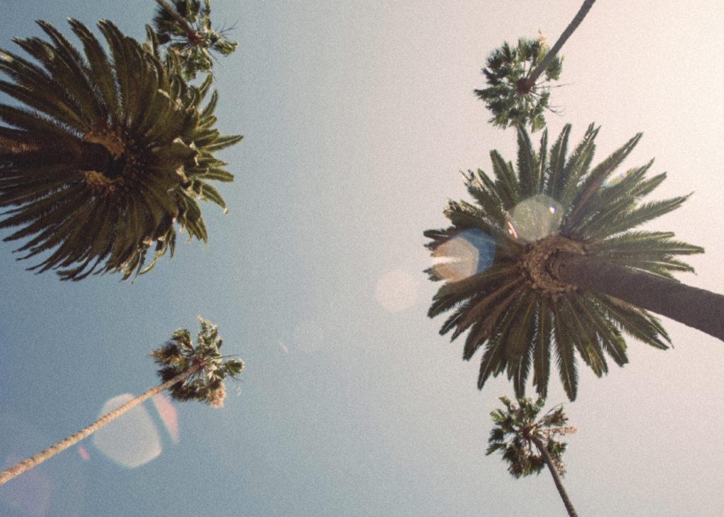 RNO1 Los Angeles